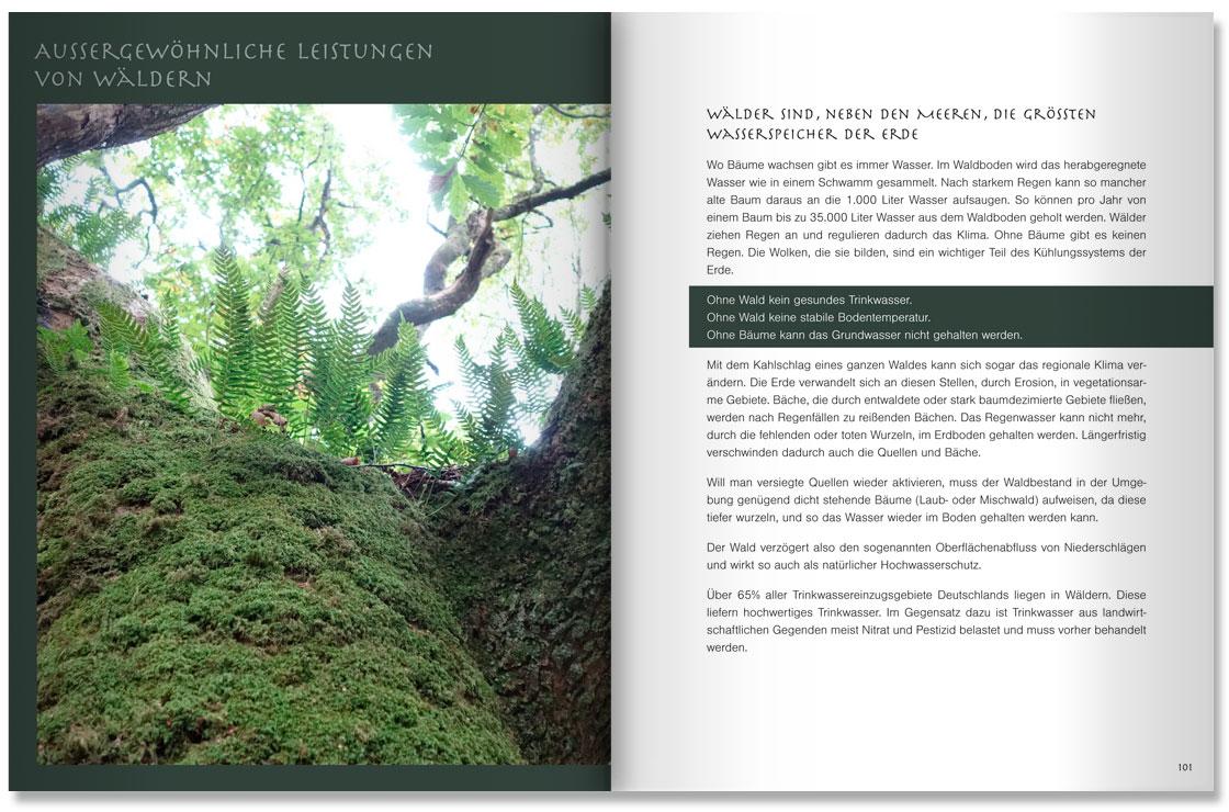 S. 100-101 Im Land der Bäume by M. Grauer und M. Haeberlein Design by blick-7