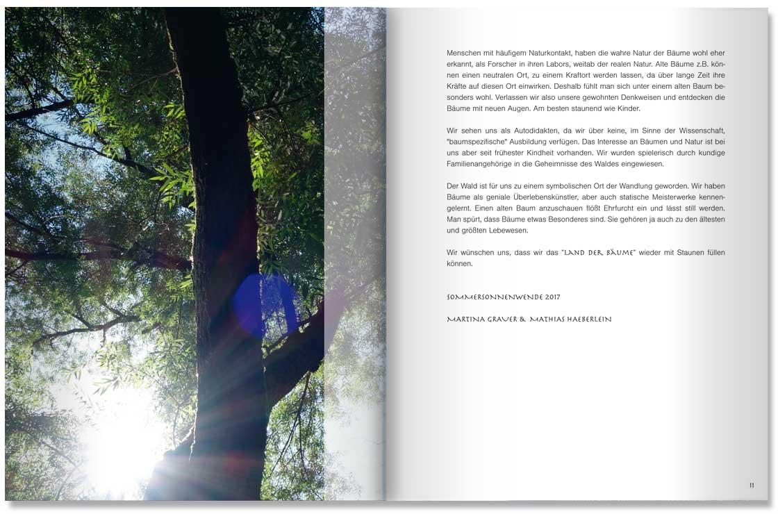 S. 10-11 Im Land der Bäume by M. Grauer u. M. haeberlein