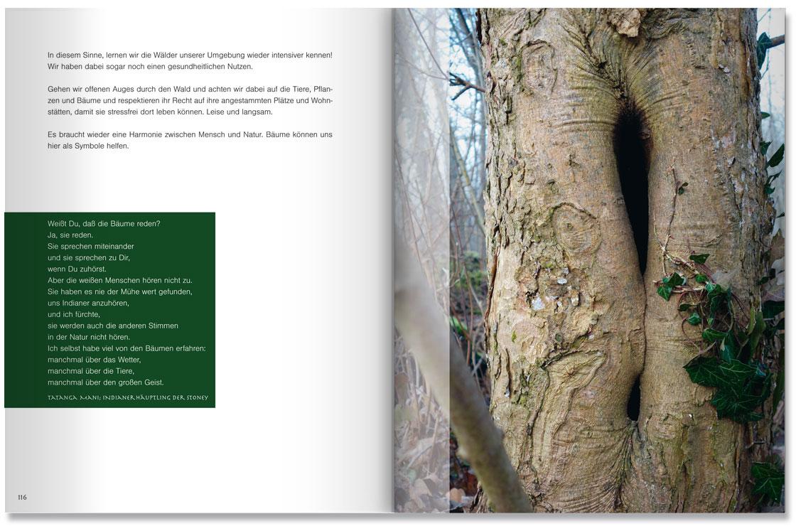 S. 116-117 Im Land der Bäume by M. Grauer und M. Haeberlein Design by blick-7
