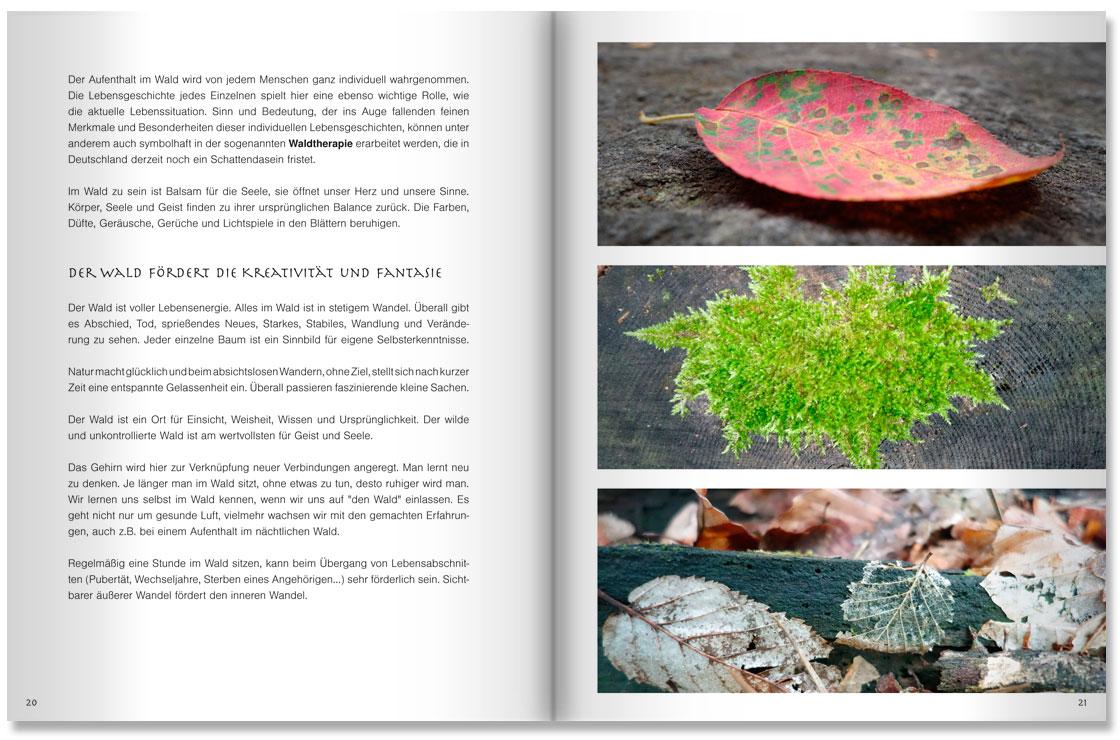 S. 20-21 Im Land der Bäume by M. Grauer und M. Haeberlein Design by blick-7