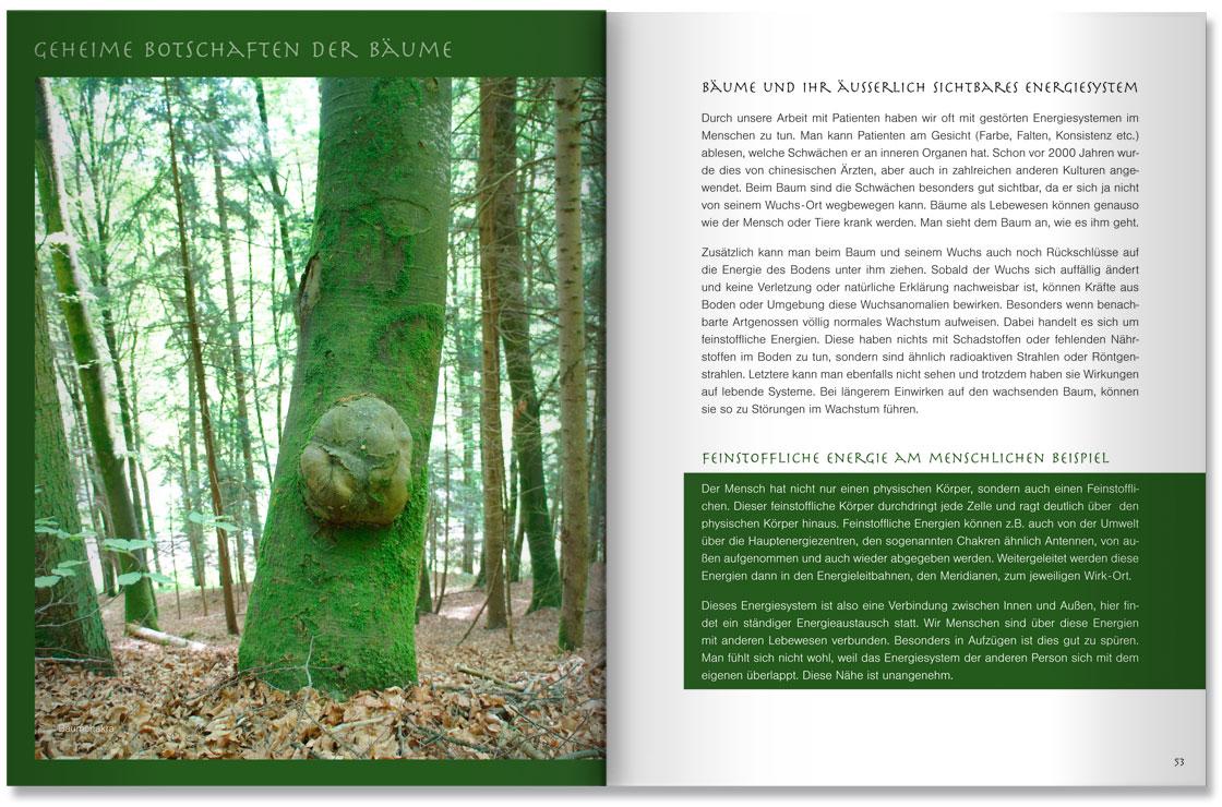 S. 52-53 Im Land der Bäume by M. Grauer und M. Haeberlein Design by blick-7